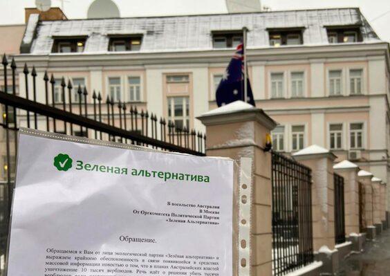 Оргкомитет партии «Зеленая Альтернатива» потребовал у властей Австралии не убивать тысячи верблюдов