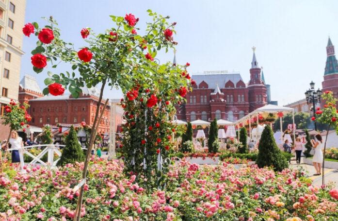 В столице объявили имена финалистов фестиваля «Цветочный джем 2020»