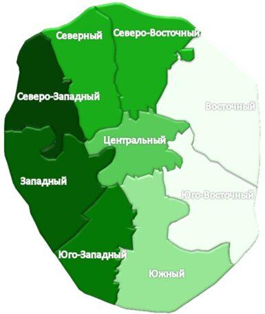 Onrealt.ru выяснил, где в Москве у владельцев животных больше шансов снять комнату