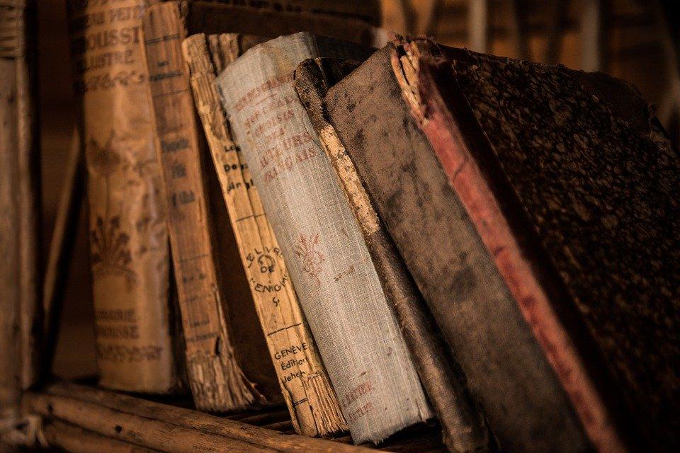 Во Всемирный день книг ВДНХ проведет литературные онлайн-встречи