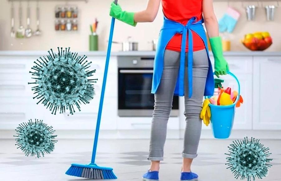 Защитить дом от проникновения инфекции поможет регулярная уборка