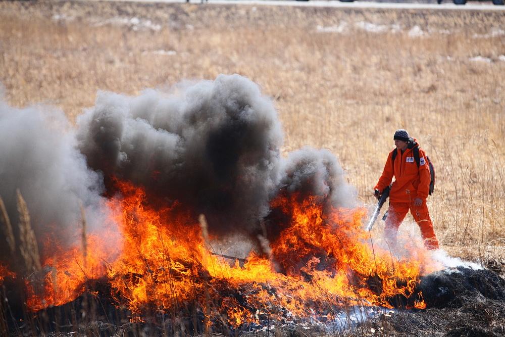 Минприроды предлагает обязать местные власти тушить пожары на бо́льших территориях