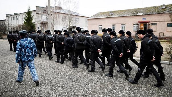 Рекордно низкое число заключенных насчитал ФСИН в России