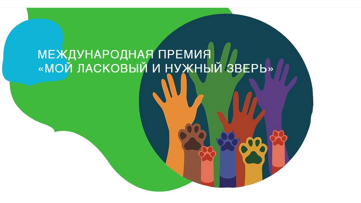 Второй международный конкурс «Мой ласковый и нужный зверь» проходит в городе Зеленоградск