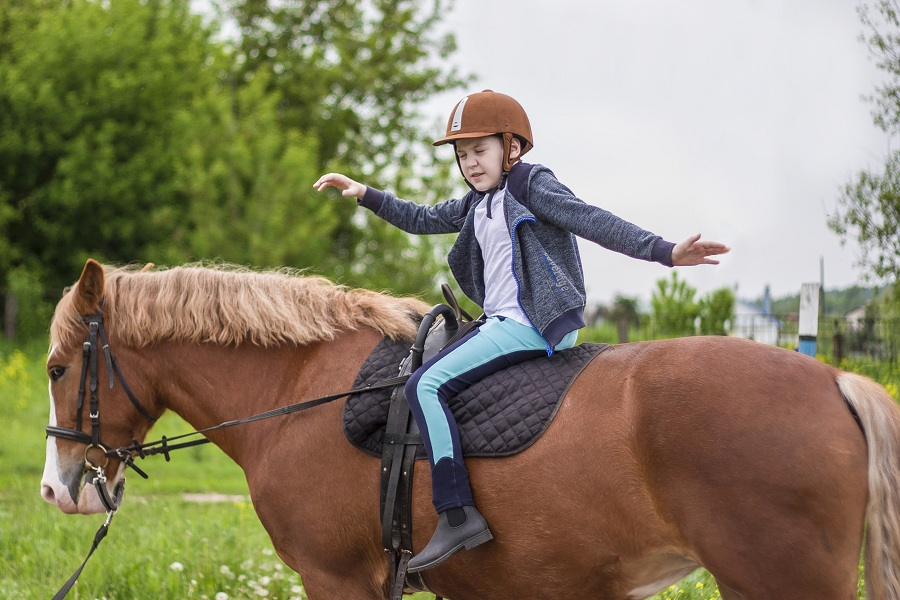 «Доктор лошадь» – программа реабилитации для детей и родителей