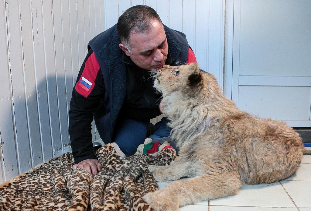 Стали известны победители и лауреаты Международной премии «Мой ласковый и нужный зверь»