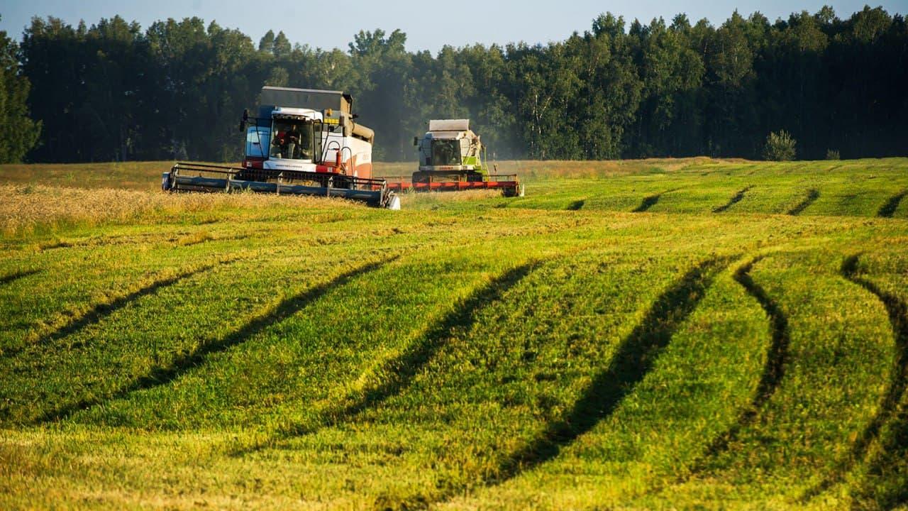 Андрей Воробьев: сельское хозяйство – перспективная точка роста