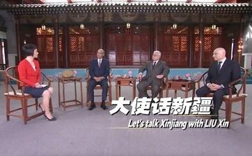 Мнением о Синьцзяне с Лю Синь поделились послы трех стран в Китае