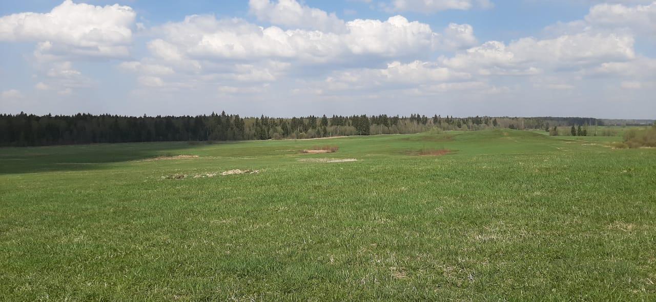 ГК Максимум Life Development строит первый поселок в Тосненском районе Ленобласти