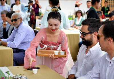 Чайные плантации в Шихе продемонстрировали дипломатам и репортерам из разных стран