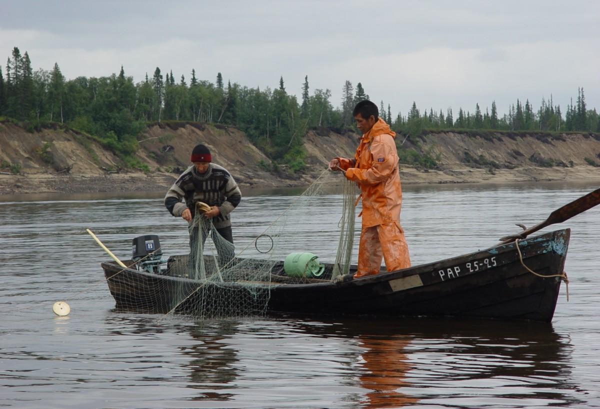 Роскомрыболовство может увеличить квоты на вылов рыбы в водоемах Таймыра