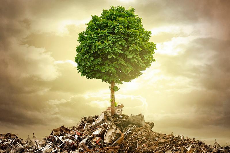 «Зелёные» требуют установить субсидиарную ответственность акционеров за экологические нарушения