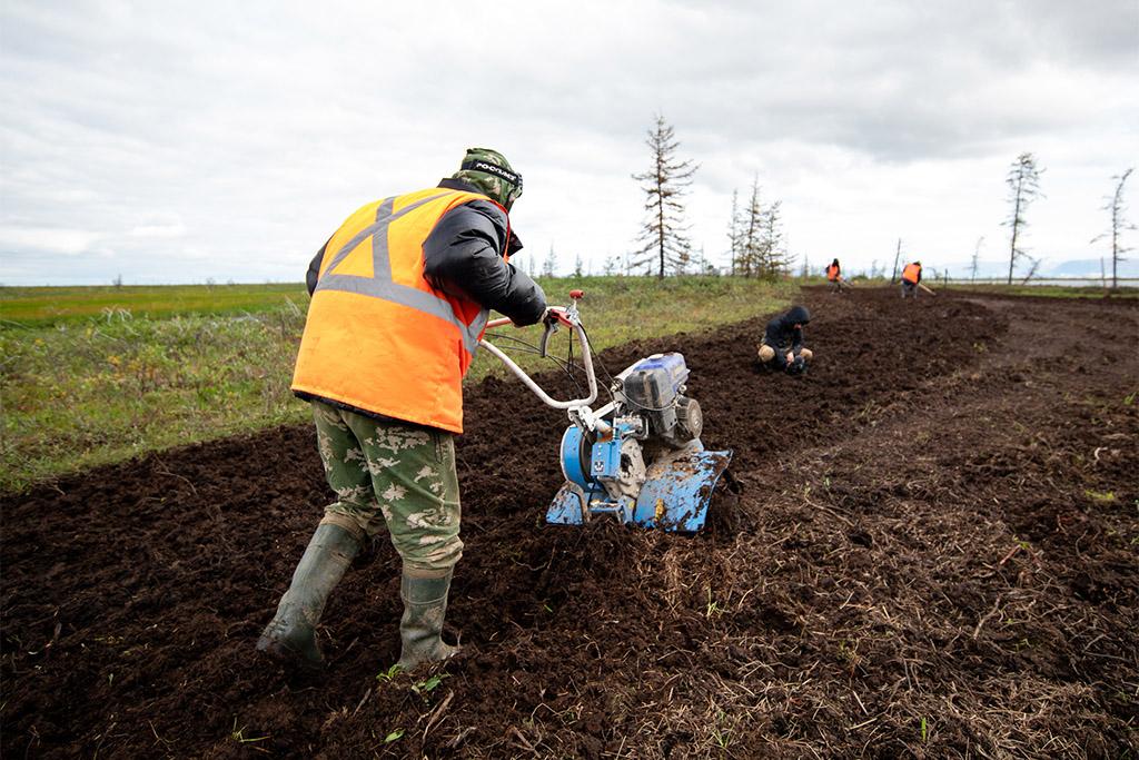 «Норникель» затеял глобальную уборку в Заполярье