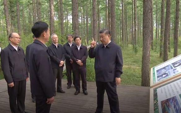 Си Цзиньпин встретился с сотрудниками лесного хозяйства Сайханба