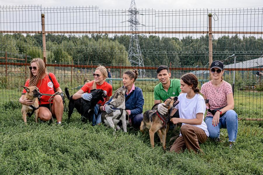 ДаДобро подвел итоги акции «Лучший друг» в Москве