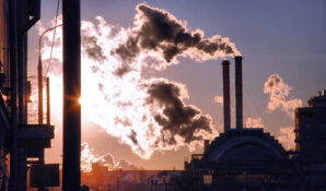Владельца ГК «ФОРЭС» обвинили в нанесении экологического ущерба – Росприроднадзор