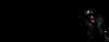 Dvorana_rocks_logo