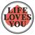 Lly-logo
