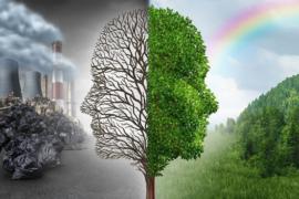 Россия и Швеция обсудили направления сотрудничества в сфере охраны окружающей среды