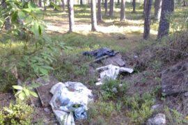 Минприроды запускает проект по раздельному сбору мусора на особо охраняемых природных территориях