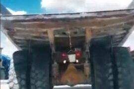 Точность-залог победы! Удивительный трюк показали водители «Оренбургских минералов»