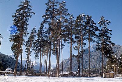 Алексей Невский рассказал о нюансах проекта по созданию Северо-Кавказского туристического кластера