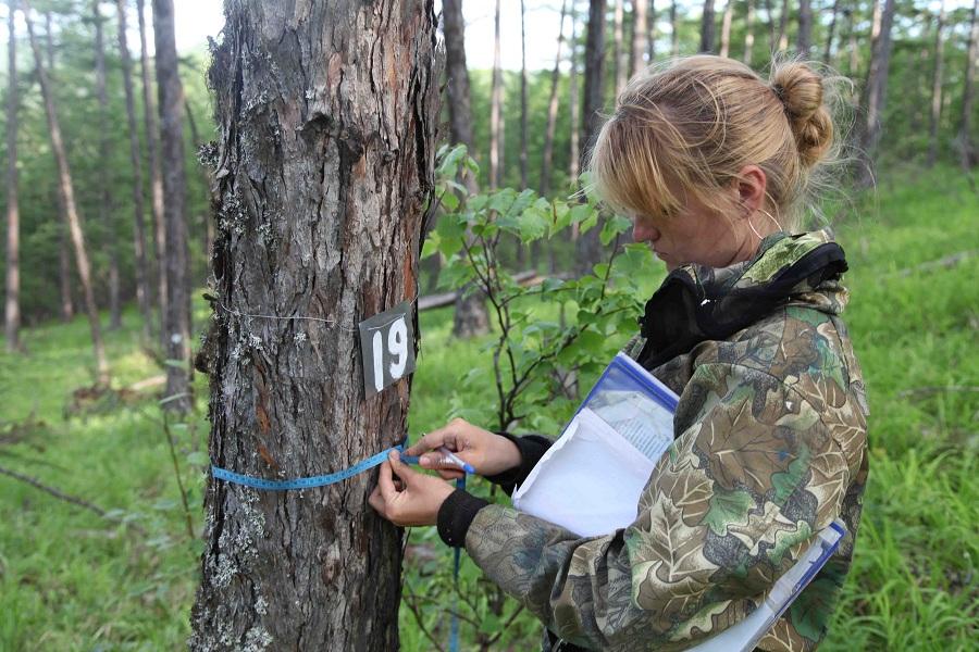Члены оргкомитета Экодиктанта высоко оценили работу работников заповедного дела России