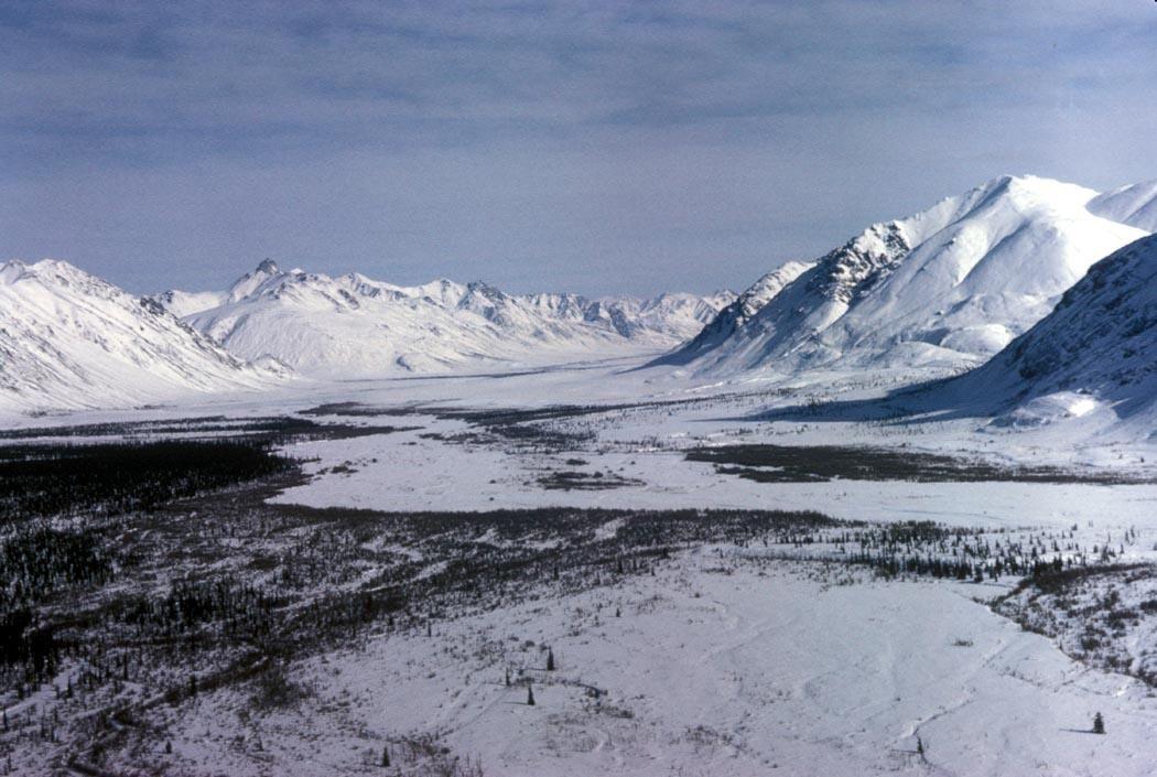 Расширение программы «Дальневосточный гектар» рассмотрят в Кабмине России