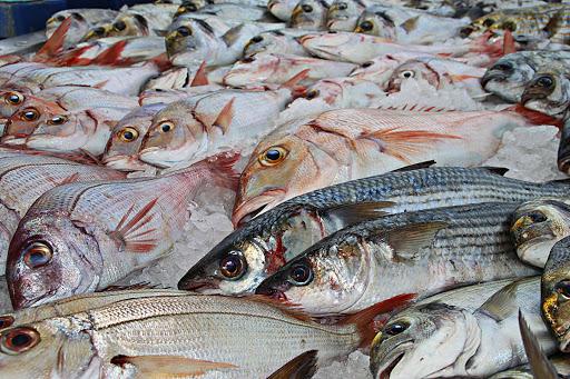 Flyingfisch - Fischladen und Lieferservice für Meeresfrüchte in Berlin-Schöneberg