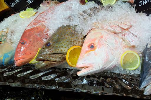 Flyingfisch GmbH - B2B Fischgroßhandel und Meeresfrüchte Lieferant für Gastronomie in Berlin
