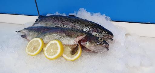 FFB Fischhandel GmbH - frischen Fisch und Meeresfrüchte online bestellen für privat und Gewerbe sowie Fischgroßhandel