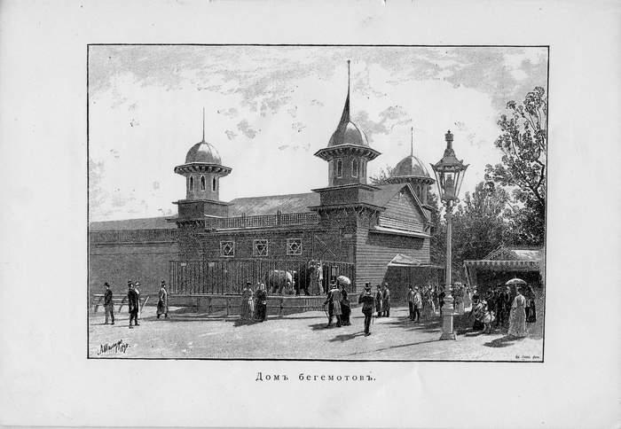 Дом бегемотов -  зоосад 1890 г.