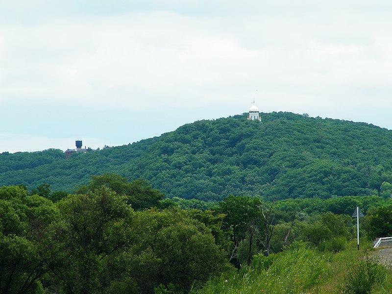 Свято-Троицкий Николаевский монастырь (Приморский край). Вид с автодороги М60