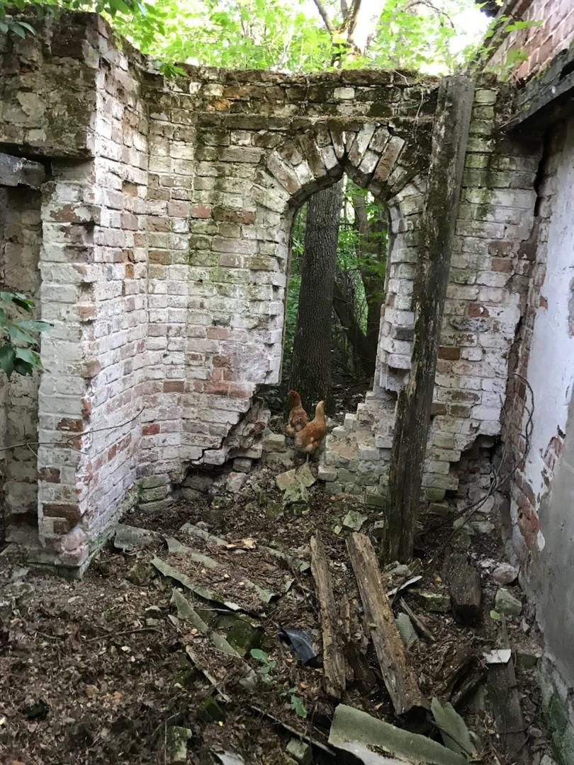 Усадьба Кологривова (с.Мещерское, Пензенская область)