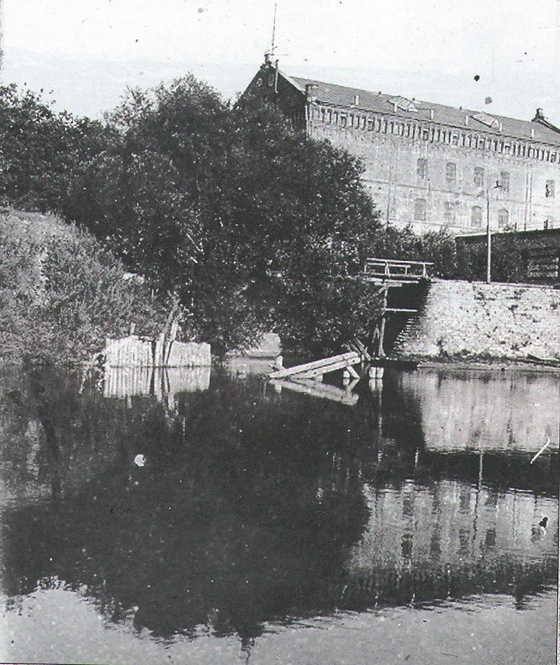 Адамова мельница в Ливнах