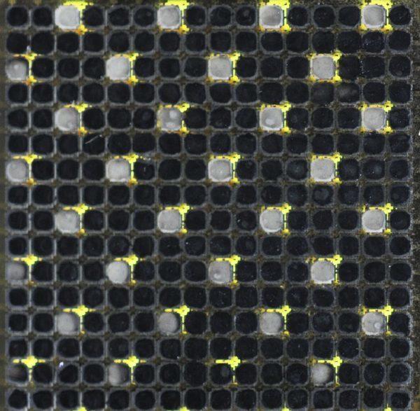 Искусственная кожа в виде пунктирной конфигурации образов
