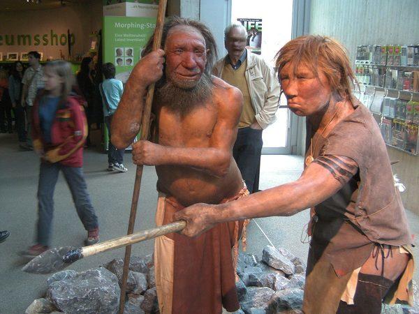 Реконструкция неандертальского мужчины и женщины, Неандертальский музей, Меттман, Германия
