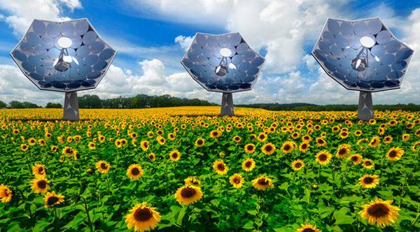 Подсолнечник Shaped солнечная батарея IBM