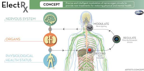 Схема принципа работы диагностики с помощью имплантанта