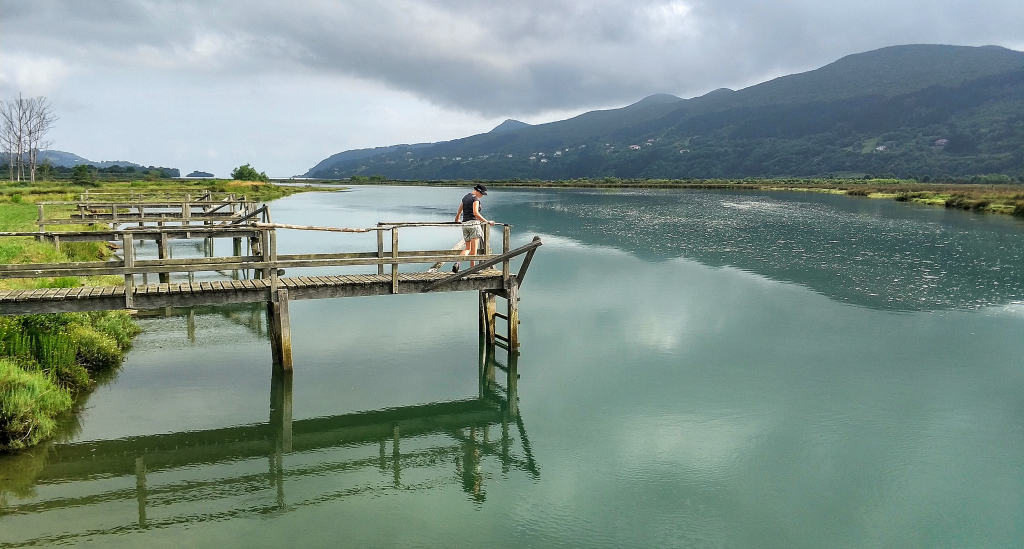 zActu2 estuaire d'Urdaibai région de Murueta où sera située une partie des installations du nouveau Guggenheim.jpeg