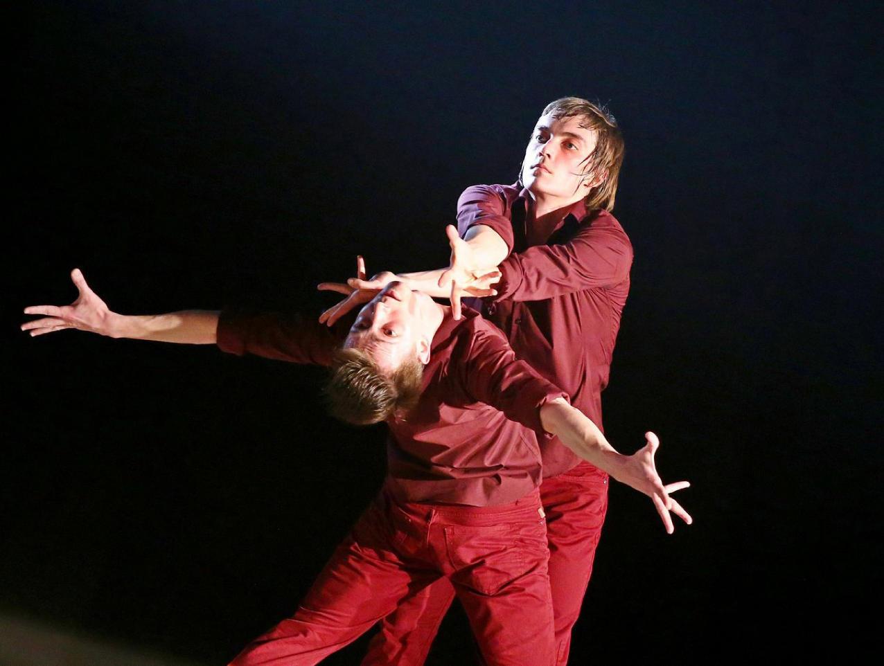 Saint-Pée-sur-Nivelle : ballets entre songes et instinct