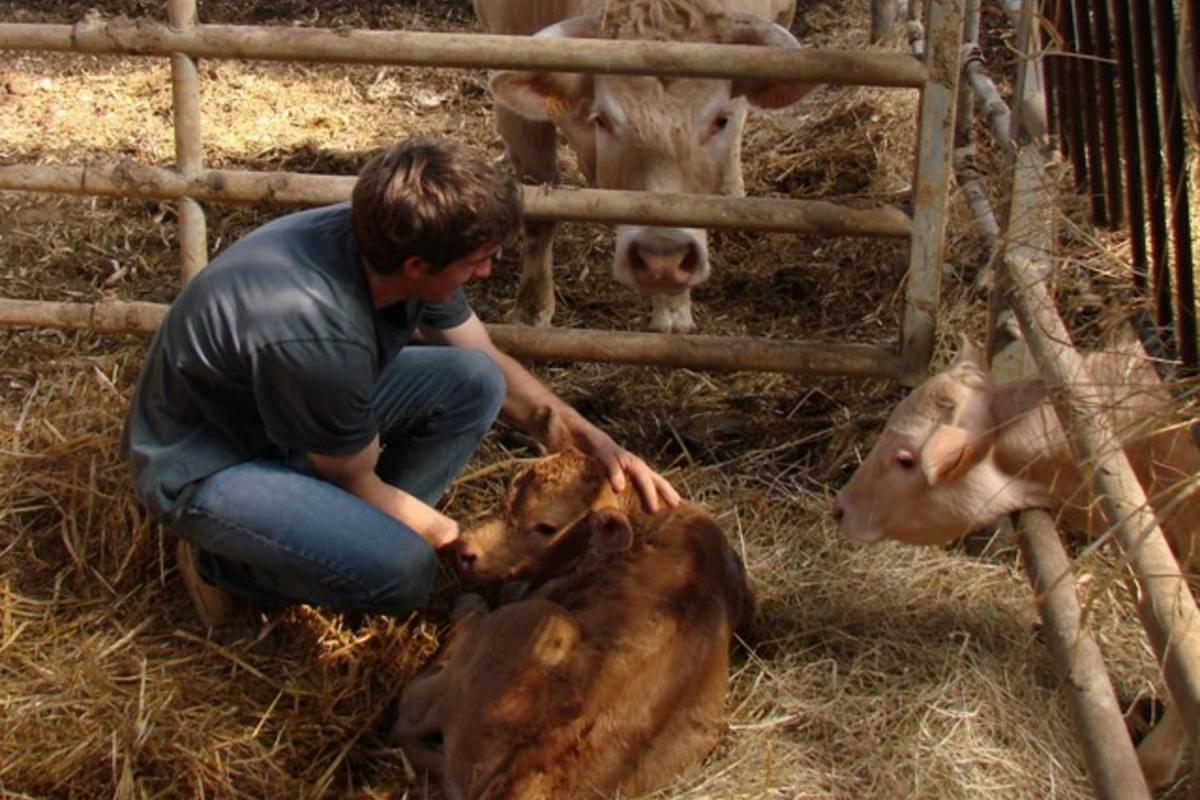 Maison Basque de Bordeaux: la recette de Mathilde avec la ferme Xemiania de Béguios