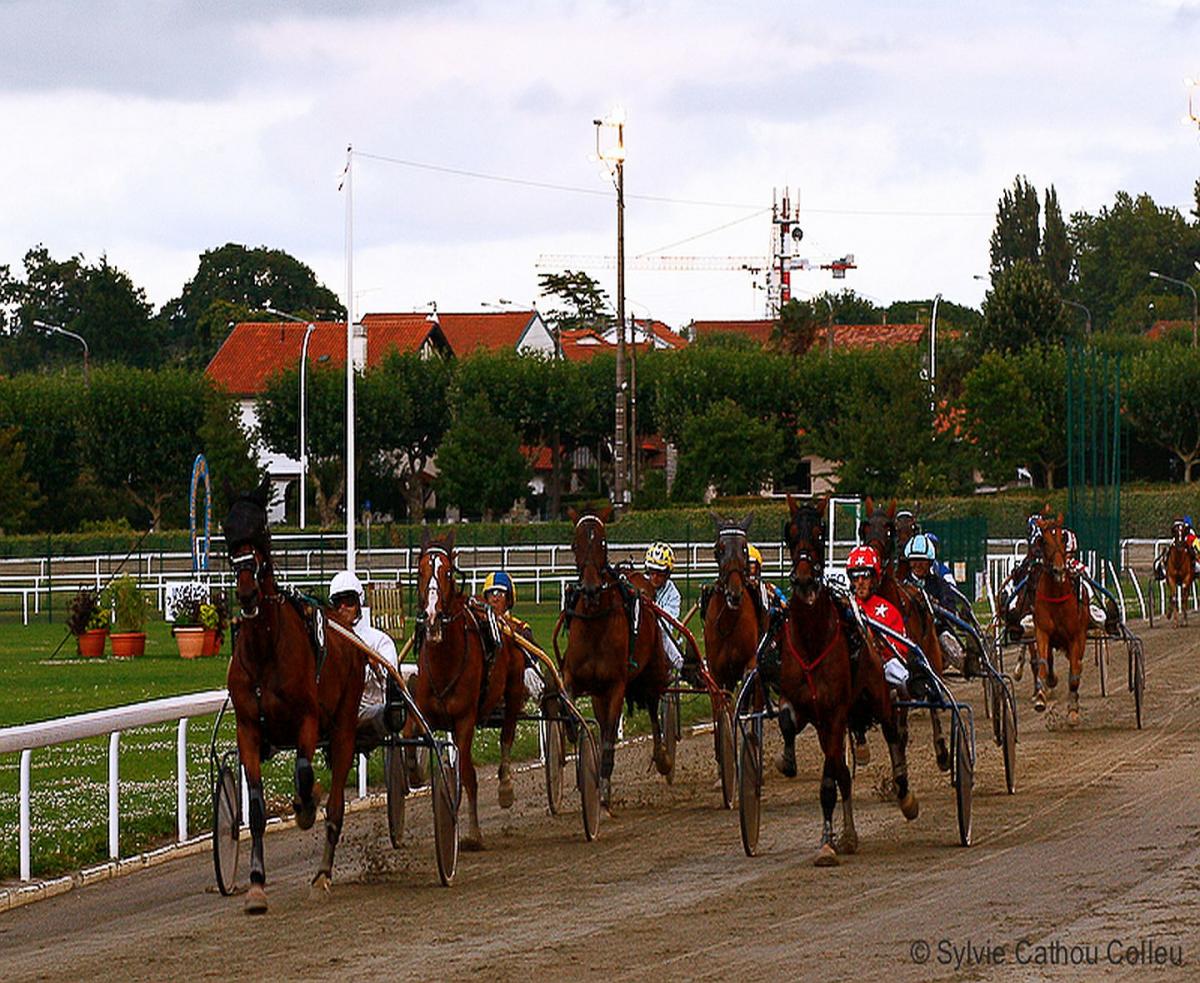 Biarritz : samedi 3 juillet, les chevaux s'élancent à l'Hippodrome des Fleurs