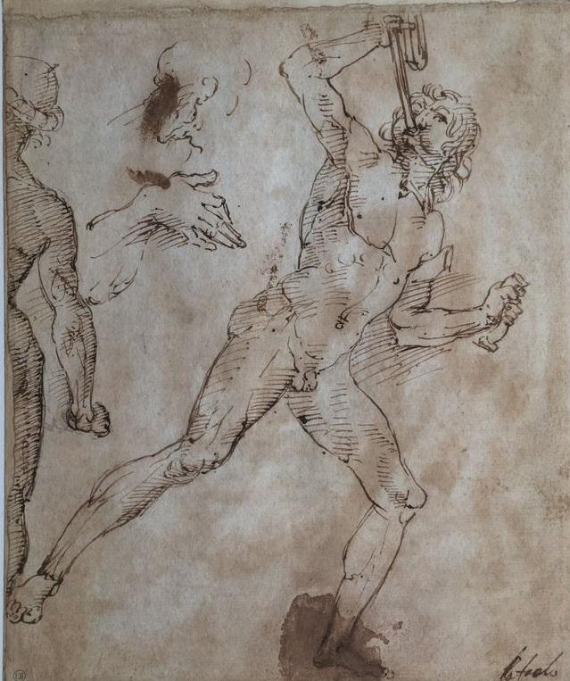 Bayonne : Raphaël au Musée Bonnat
