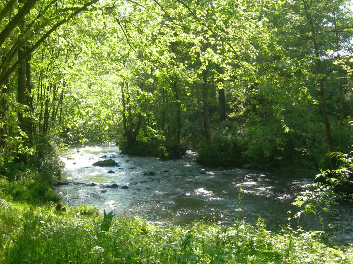 Les cours d'eau en territoire basque et béarnais
