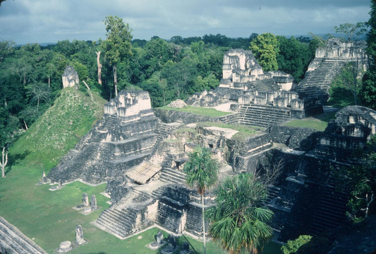 Tikal, pyramides disséminées dans la forêt tropicale.jpg