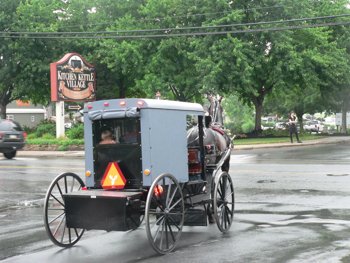 Cariole Amish.JPG