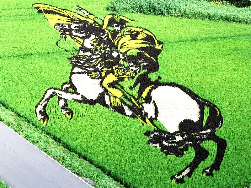 800px-Napoleon_of_rice_field_art.jpg
