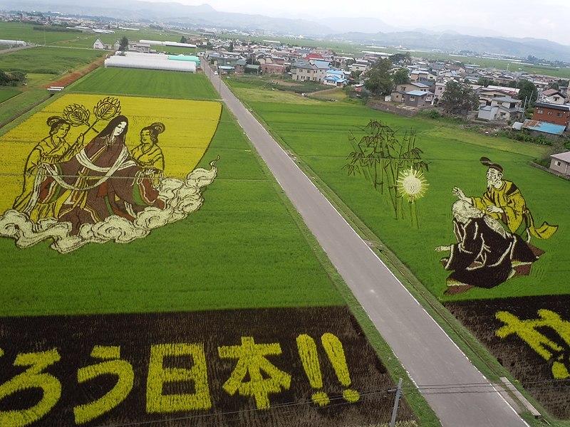Inakadate_Tanbo_Art_(田舎館の田んぼアート)_-_panoramio_(1).jpg