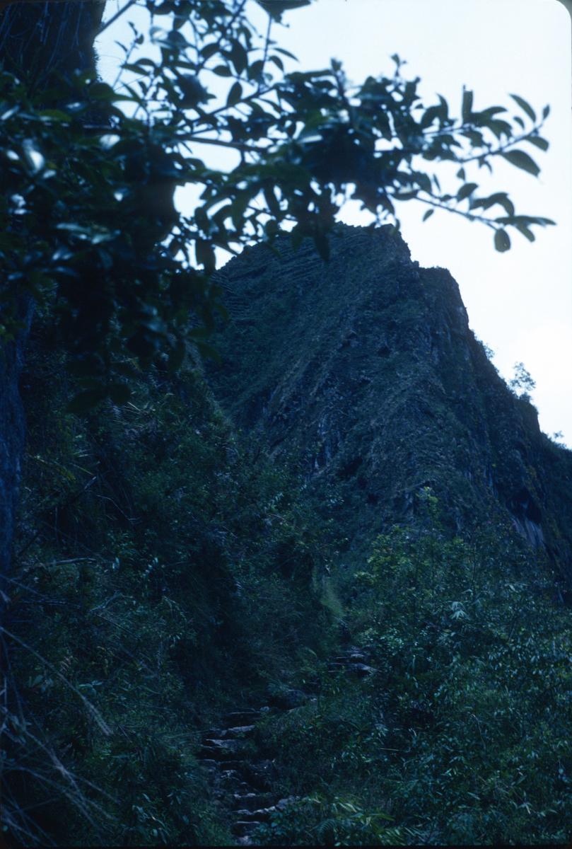 Machu Picchu en vue! Sentier sur le Chemin des Incas.jpg